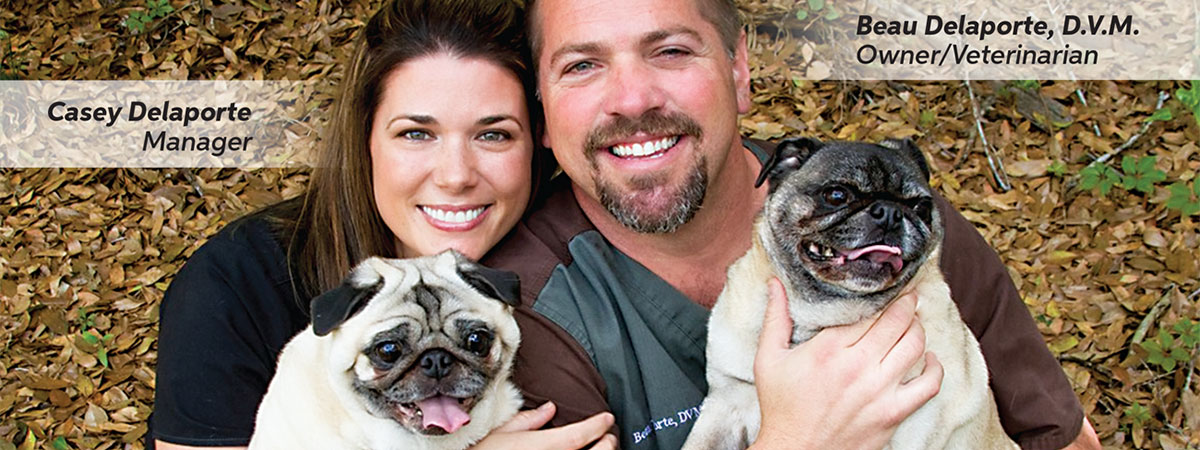 Casey and Beau Delaporte with their dogs